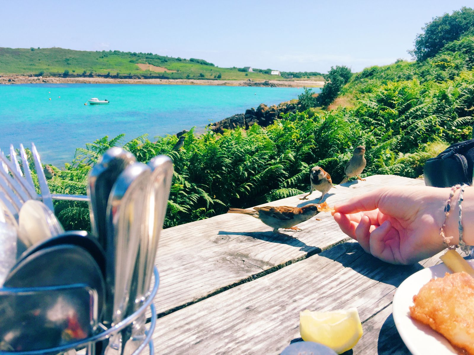 More Photos From The Isles Of Scilly... (1)