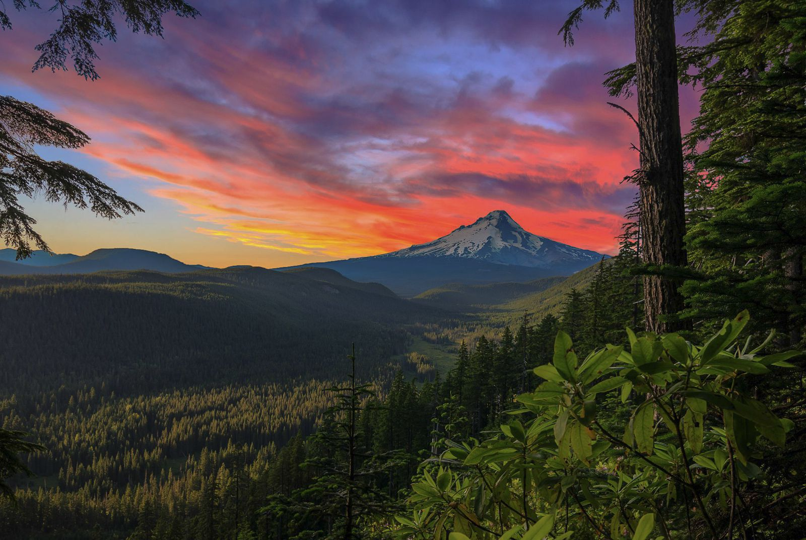 12 Of The Best Hiking Routes You Have To Experience In California (13)