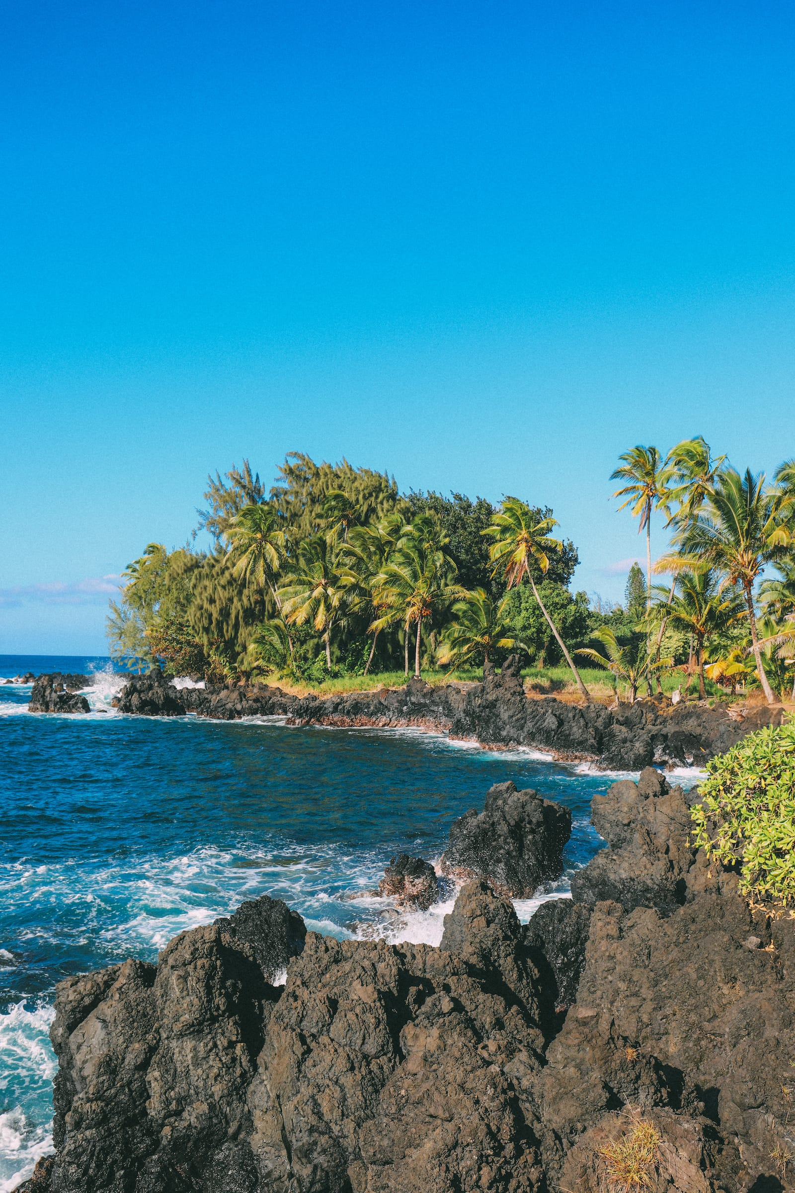 Photos And Postcards From Hawaii... (3)