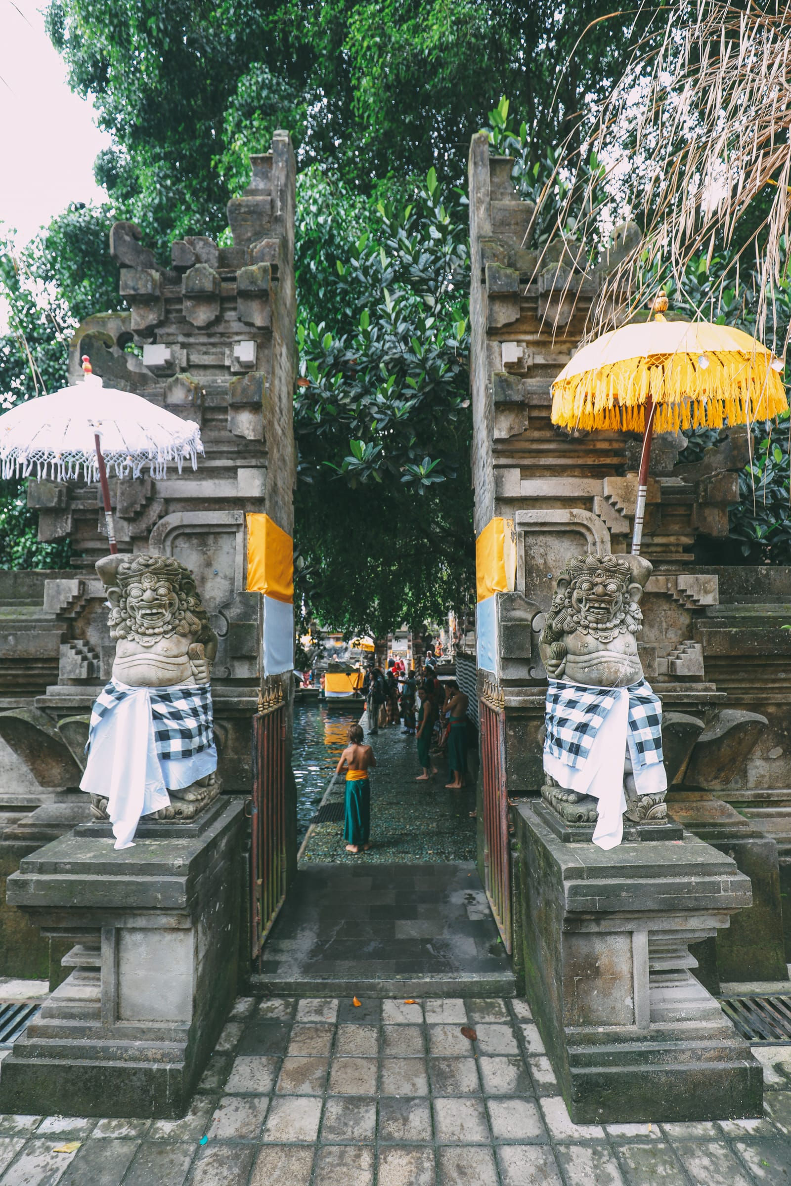Finding A Secret Waterfall in Bali, Tirta Empul Temple And Mount Batur Volcano (10)
