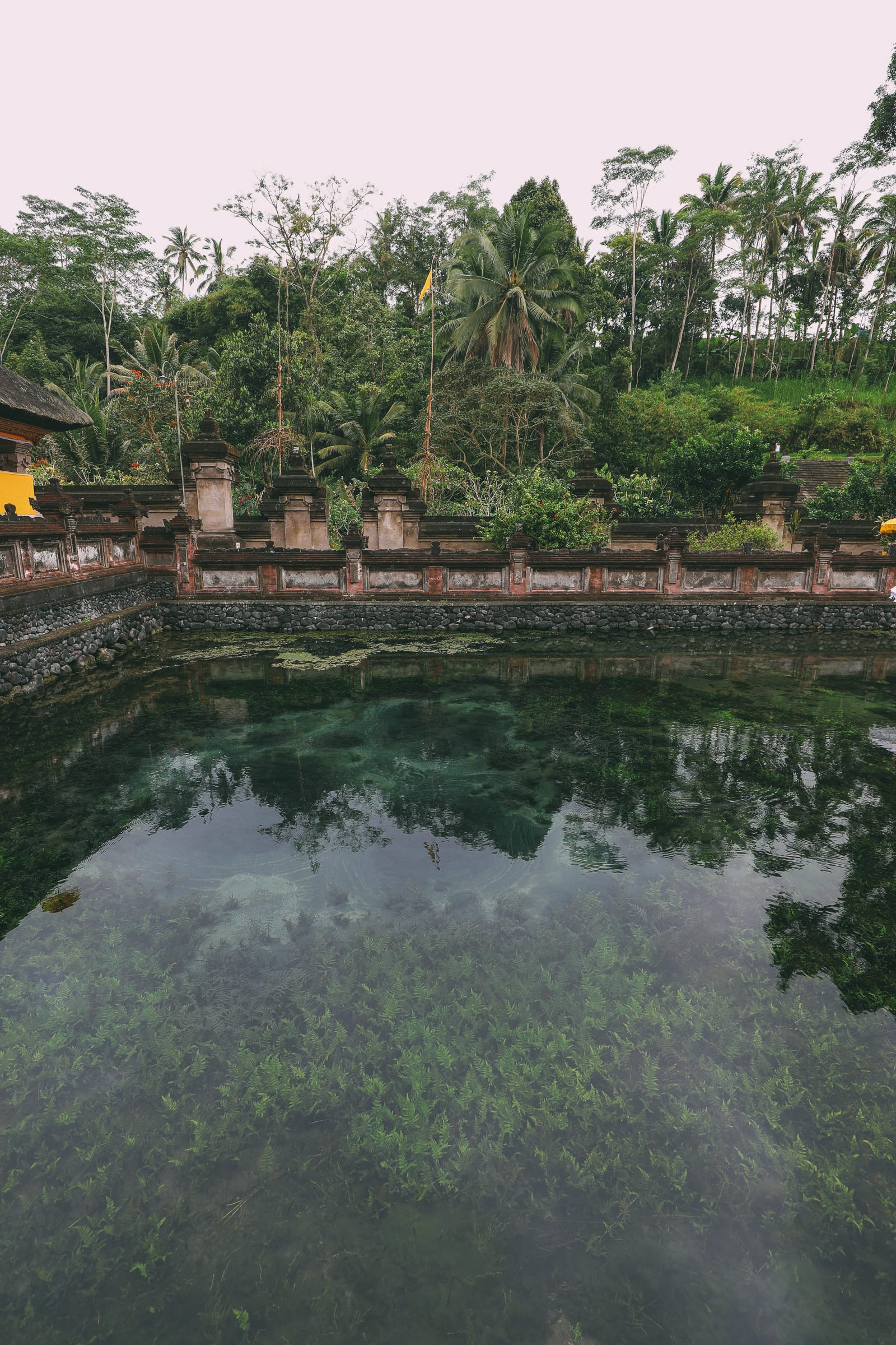 Finding A Secret Waterfall in Bali, Tirta Empul Temple And Mount Batur Volcano (17)