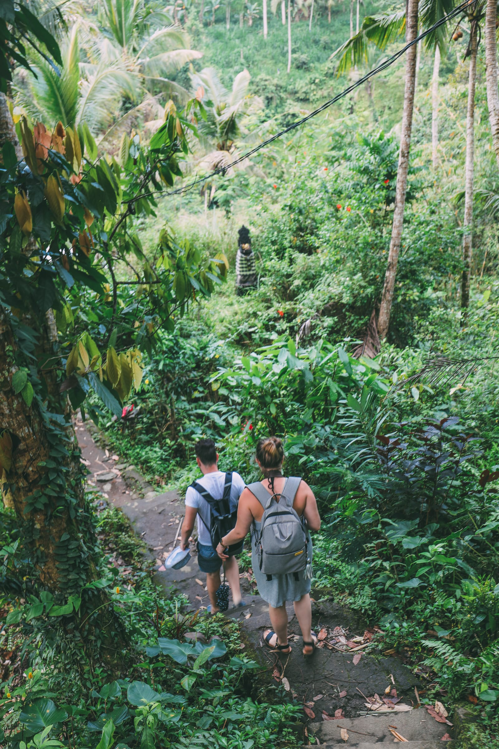 Finding A Secret Waterfall in Bali, Tirta Empul Temple And Mount Batur Volcano (34)
