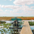 The Everglades In Florida, USA – Things To Know Before You Visit